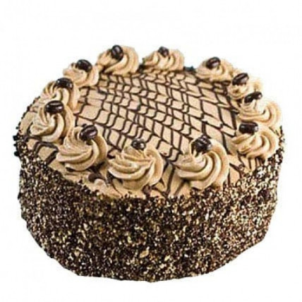 Special Delicious Coffee Cake - 500 Gm
