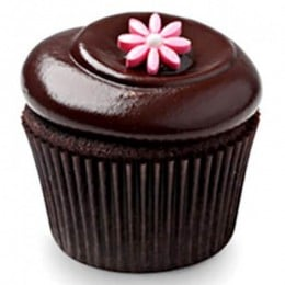 Chocolate Squared Cupcakes-set of 6