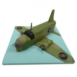 Green Airplane Cake - 3 KG