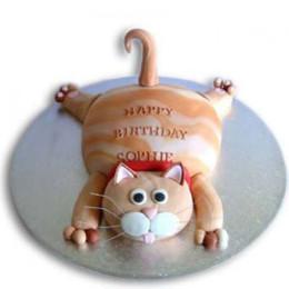 Tabby Cat Cake - 2 KG