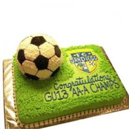 Soccer Cake - 2 KG