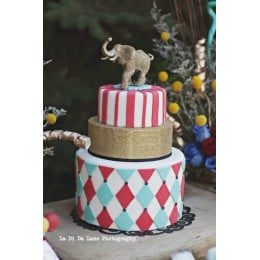 Party Elephant Cake-6 kg