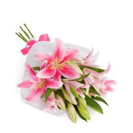 4 Pink Lillies
