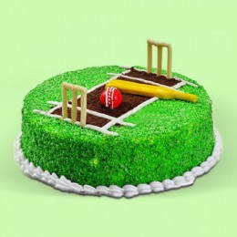 Cricket Pitch - 500 Gm