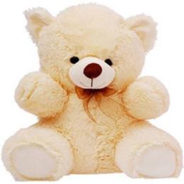 1 Feet Teddy